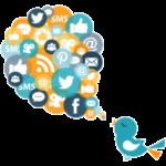 SMO (Social Media Optimization) o Social Media Marketing – Marketing attraverso servizi SOCIAL